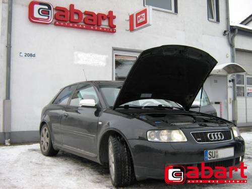Audi S3-1.8T